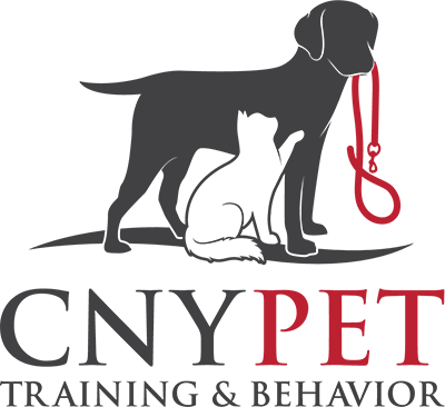 Our Classes – CNY Pet Training & Behavior